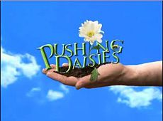 Pushing Daisies: Logotipo
